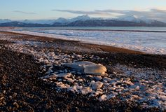 Icy Alaskan beach Stock Images