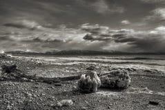 Icy Alaskan Beach Scene Stock Photos