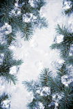 Icy background Royalty Free Stock Image