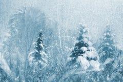 Icy background stock image