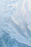 Icy background Stock Image