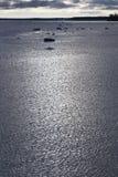 Icy Baltic coast. Royalty Free Stock Image