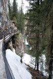 Icy Canyon Walkway. Beautiful parcially frozen stream through a deep canyon in the Canadian Rocky Mountains Stock Photo
