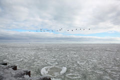Icy Chicago Winter Lake Michigan, Cloudy With a Sliver of Sky Blue Peeking Through and a Line of Flying Geese Over the Horizon Royalty Free Stock Photos