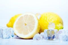 icy citroner arkivfoton