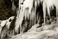 Icy cliff. Huge icicles hanging from a cliff Stock Photos