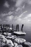 Icy Coastline Royalty Free Stock Images