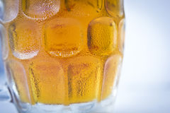Icy cold beer Royalty Free Stock Photo