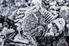 Icy cold on black coals as background Royalty Free Stock Images