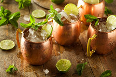 Icy Cold Moscow Mules Royalty Free Stock Photos