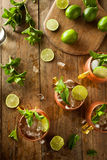 Icy Cold Moscow Mules Royalty Free Stock Images