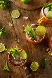 Icy Cold Moscow Mules Stock Photos