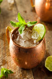 Icy Cold Moscow Mules Stock Images