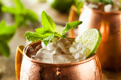 Icy Cold Moscow Mules Royalty Free Stock Photography