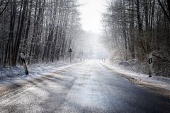 Icy country road leads through a winter forest with bare trees a. Nd snow, concept for safety transport and traffic in the cold season Stock Photography