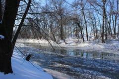 Icy creek Royalty Free Stock Photos