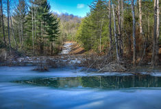 Icy creek Royalty Free Stock Photos