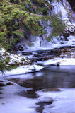 Icy creek. Royalty Free Stock Photos