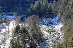 Icy Creek Stock Image