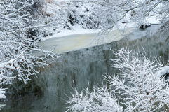 Icy creek in winter. An icy creek with snow-covered branches in winter stock image