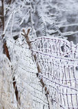 Icy dilapidated fence Royalty Free Stock Images