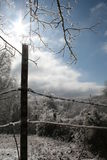Icy Fence Stock Photography