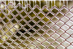 Icy fence. Fence with ice on it Royalty Free Stock Photo