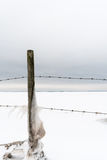 Icy fence post with barbwire Royalty Free Stock Image