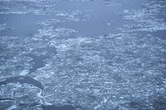 Icy floes of solid water float down river breaking upon the way Stock Photos
