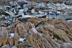 Icy frozen river on murky winter day. Small stream, grass and stones covered with ice royalty free stock image
