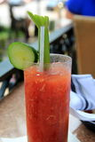 Icy glass of delicious bloody mary, a favorite of many Royalty Free Stock Photo