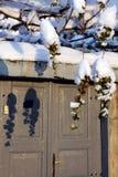 Icy Grapes and Shadows royalty free stock image