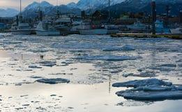 Icy Harbor at Dawn Royalty Free Stock Photos