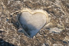 Icy heart. Stock Images