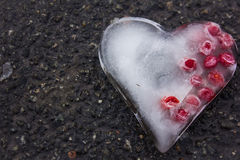 Icy heart with berries Royalty Free Stock Photo