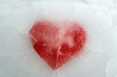 Icy heart. Red heart frozen in ice Stock Image