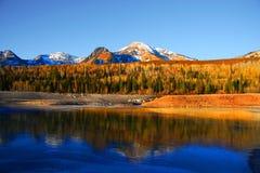 icy lake Arkivfoton