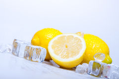Icy Lemons Royalty Free Stock Images