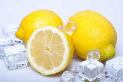 Icy lemons Royalty Free Stock Photography