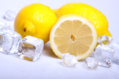 Icy lemons Stock Images
