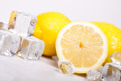 Icy lemons Royalty Free Stock Photo