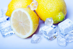 Icy Lemons! Stock Photo
