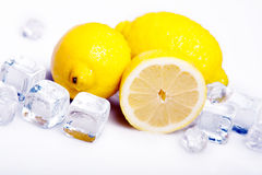 Icy Lemons! Stock Images