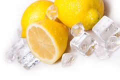 Icy lemons Stock Photography