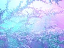 Icy Light Stock Photos