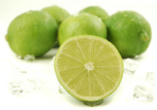 Icy Limes Royalty Free Stock Image