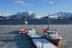 Icy Lofoten's fjord. A small harbour of Lofoten island with the boats imprisoned by the ice royalty free stock images