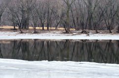 Icy Mississippi River and Woods in Crosby Park Stock Photos