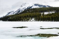 Icy Mountain Lake on an Overcast Day. Icy Mountain Lake with Forested Shores on a Cloudy Winter Day. Banff National park, AB, Canada Royalty Free Stock Photography