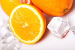 Icy Oranges Royalty Free Stock Image